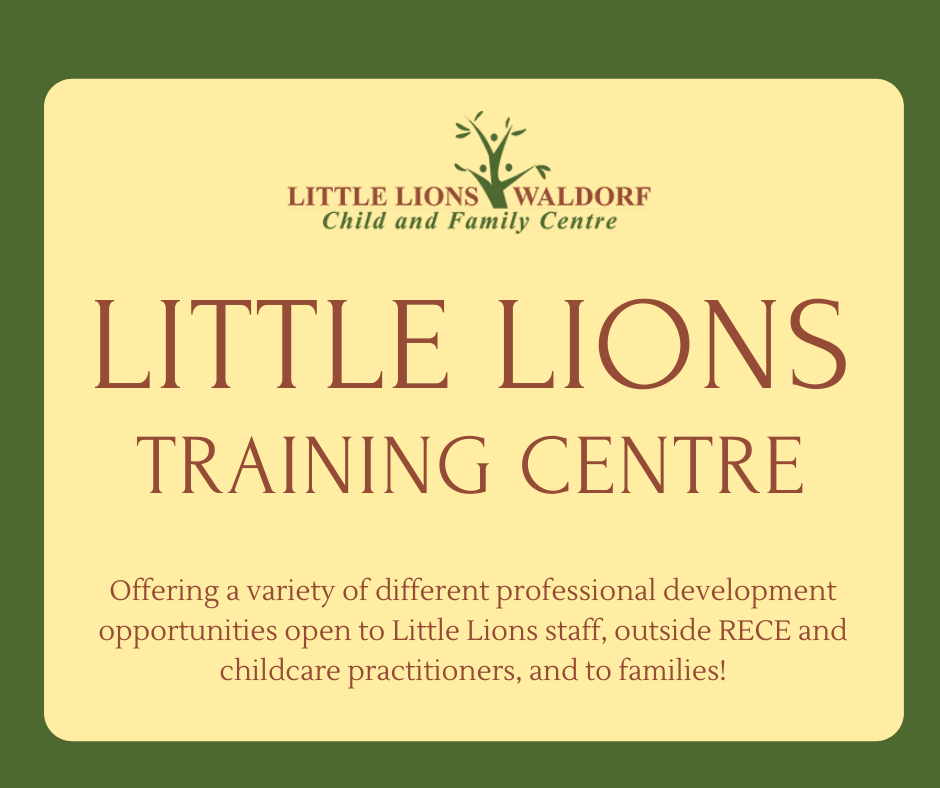 little-lions-training-cnetre001